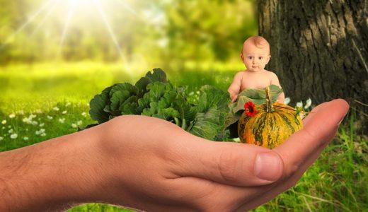 授乳期に不足しがちな必要栄養素や摂取カロリー量を補うには?